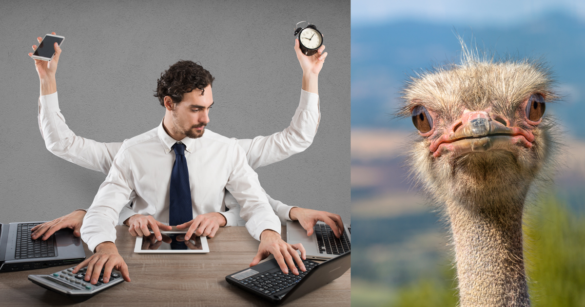 Ostrich or Control Freak